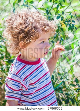 Baby Boy Exploring Outdoor