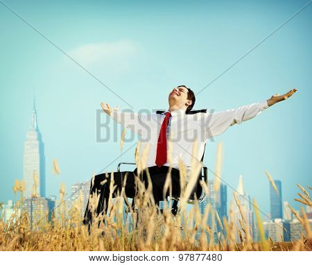 Businessman Relaxation Freedom Happiness Getaway Concept