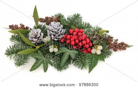 Christmas and winter flora with holly, mistletoe, pine cones and traditional greenery over white background.