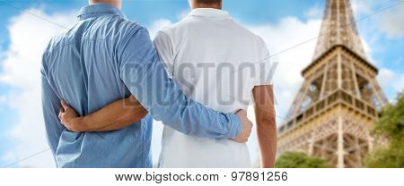 people, homosexuality, same-sex marriage, gay and love concept - close up of happy male gay couple hugging from back over paris eiffel tower background