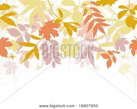 Herfst naadloze achtergrond met spinnen en spinnenwebben.
