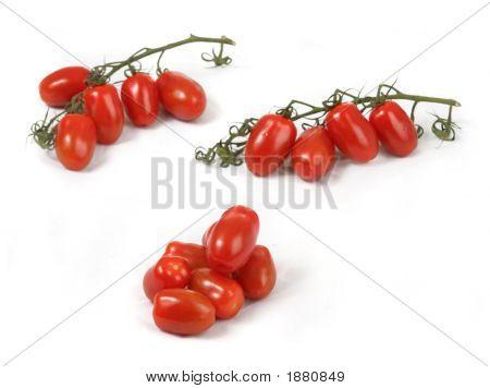 Tomato Contest