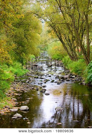 Photograph of the creek in the countryside