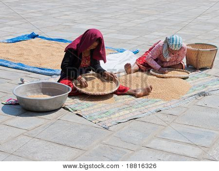 Two Women Separating Grain