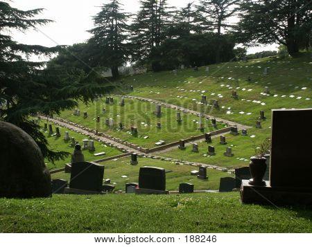 Cemetery Paths