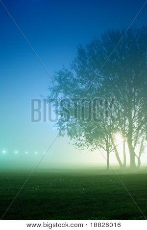 Park in foggy night