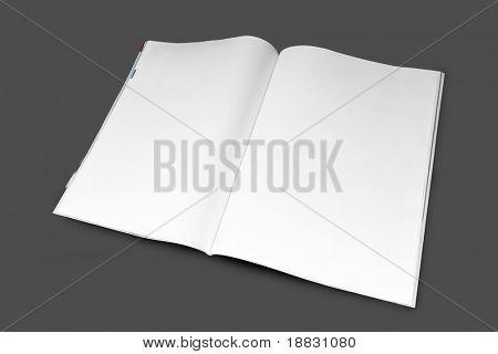 Revista en blanco