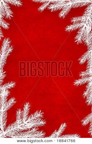 Red Christmas Background umrahmt mit weißen Nadelbaum-Niederlassungen