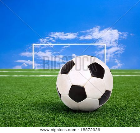Classic soccer ball on green grass