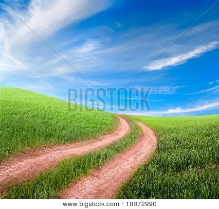 beautiful dirt road and meadow