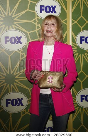 LOS ANGELES - JAN 8:  Sally Kellermann at the FOX All Star Winter TCA Party at Castle Green on January 8, 2012 in Pasadena, California.