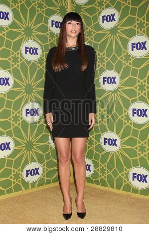 LOS ANGELES - JAN 8:  Hannah Simone at the FOX All Star Winter TCA Party at Castle Green on January 8, 2012 in Pasadena, California.