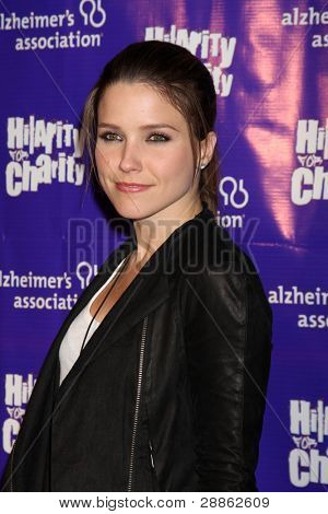 LOS ANGELES - JAN 13:  Sophia Bush arrives at  the