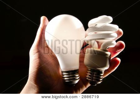 Hand Holding A Cfl And Incadescent Lightbulb