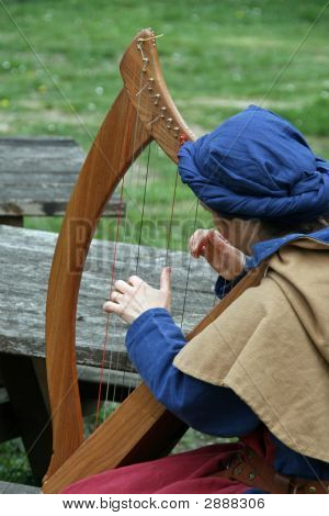 Celtic Harp Player