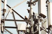 Bird On A High-voltage Transmission Line. Birds Dont Get Shocked When They Sit On Electrical Wires  poster