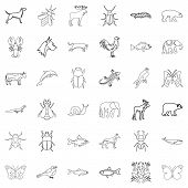 Mammal Icons Set. Outline Style Of 36 Mammal Icons For Web Isolated On White Background poster