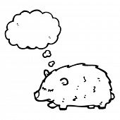 stock photo of wombat  - wombat with thought bubble cartoon - JPG