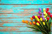 Tulip Blossom Flowers On Vintage Wooden Background, Border  Frame Design. Vintage Color Tone - Conce poster