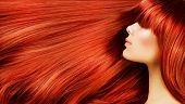 picture of red hair  - Healthy Long Hair - JPG