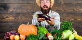 Man With Beard Wooden Background. Farmer With Organic Vegetables. Excellent Quality Harvest. Organic poster