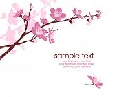 stock photo of fragile sign  - card with stylized cherry blossom and text - JPG