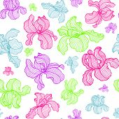 Vector Seamless Pattern Of Hand Drawn Iris Flowers. Endless Botany Texture For Fabrics, Textile Prin poster