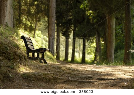 Resting Spot