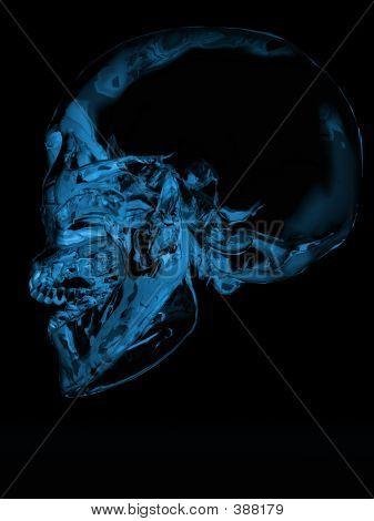 Crystal Skull 5