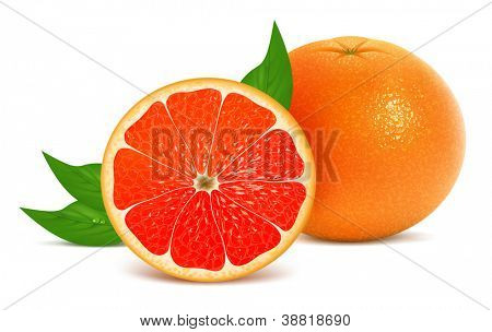 Vector illustration of fresh grapefruits with leaves