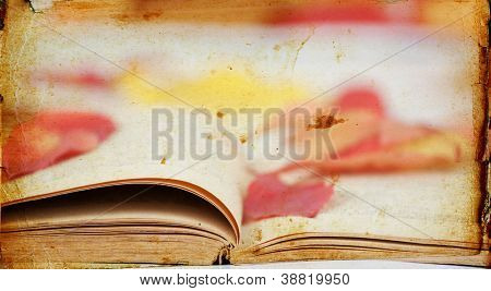 Old book and colorful autumn leaves on vintage background