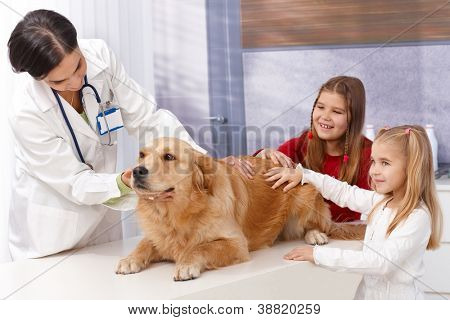 Little girls and golden retriever at pets' clinic during examination.