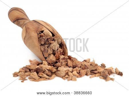 Galangal root in an olive wood scoop over white background. Usedin cooking and in chinese herbal medicine.