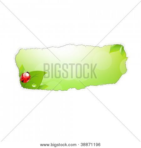 Paper Hole With Leaf And Ladybug With Gradient Mesh, Vector Illustration