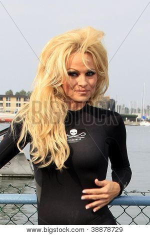 LOS ANGELES - NOV 2:  Pamela Anderson at the Sea Shepherd's Operation Zero Tolerance Antarctic whale defense campaign press conference on November 2, 2012 in Fisherman's Village,Los Angeles, CA