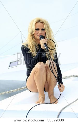 LOS ANGELES - NOV 2:  Pamela Anderson at the Sea Shepherd's Operation Zero Tolerance Antarctic whale defense campaign press conference on November 2, 2012 in Fisherman's Village, Los Angeles, CA