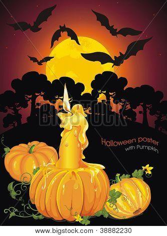 Halloween Pumpkins - Candlelight