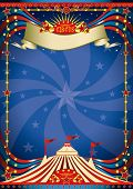 picture of school carnival  - Circus night poster - JPG
