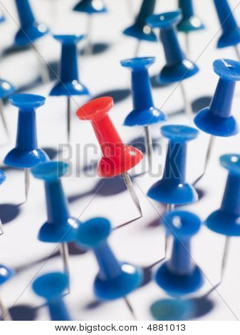 One Red Thumbtack Amid Blue Thumbtacks