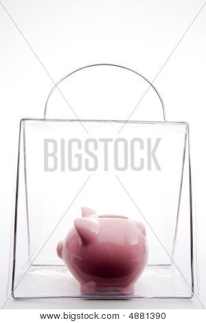 Piggy Bank In A Bag