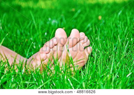 Female feet in green grass