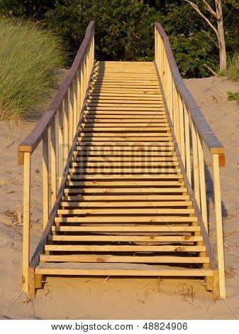 Save The Dunes - Use The Steps