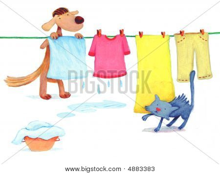 Dog Is Doing Laundry