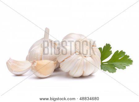 bulbo de alho isolado no recorte de fundo branco