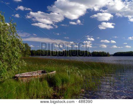Summer Lakefront