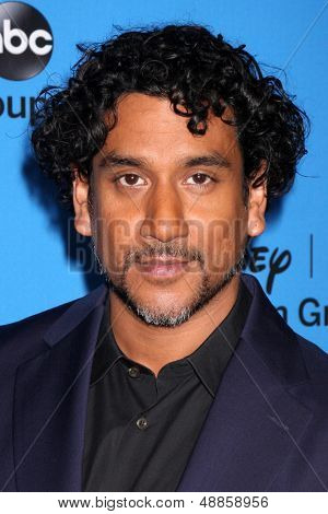 LOS ANGELES - AUG 4:  Naveen Andrews arrives at the ABC Summer 2013 TCA Party at the Beverly Hilton Hotel on August 4, 2013 in Beverly Hills, CA