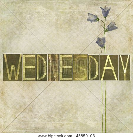 "Earthy texture background and design element depicting the word ""Wednesday"""