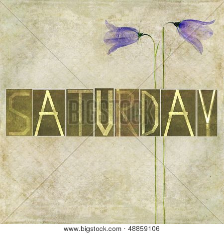 """Earthy texture background and design element depicting the word """"Saturday"""""""