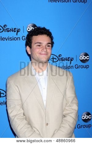 LOS ANGELES - AUG 4:  Troy Gentile arrives at the ABC Summer 2013 TCA Party at the Beverly Hilton Hotel on August 4, 2013 in Beverly Hills, CA