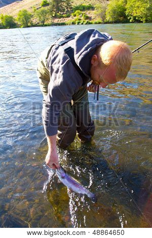 Rainbow Trout Catch Release